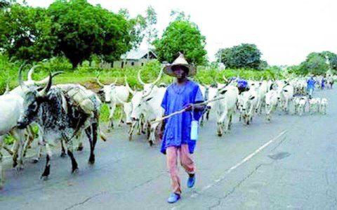 wpid-fulani-herdsmen.jpg