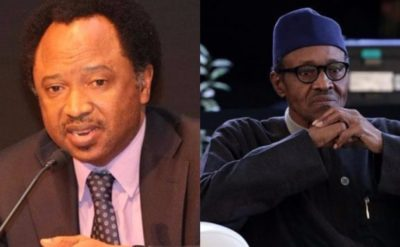 Presidential debate: They want to disgrace Buhari, it's not by force to attend – Shehu Sani