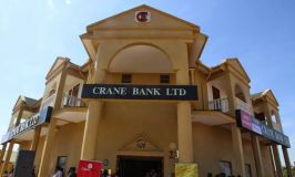 Statutory Manager Denies Writing Key Reports For The Sale Of Crane Bank