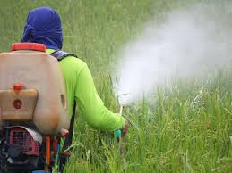 Farmers' Guide With Joseph Mugenyi: Herbicides Application In Farming