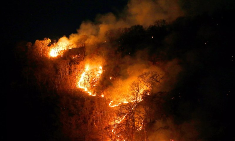 Europe Mourns As Amazon Rain Forests Burn To Ashes