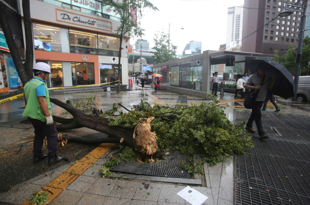 Typhoon Claims Lives, Many Injured
