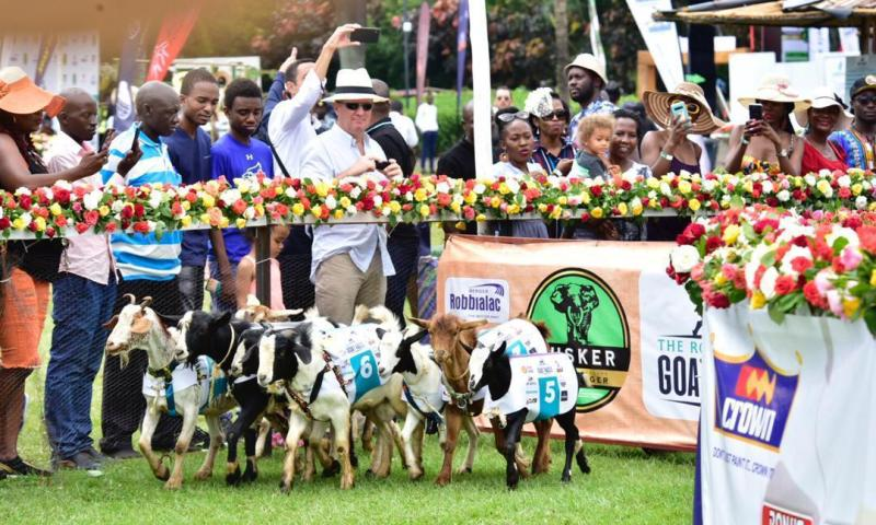 What You Missed During Royal Ascot Race 2019 At  Speke Resort Munyonyo