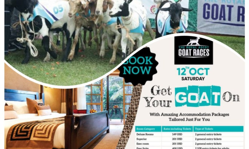 City Partiers Warm Up For This Saturday's Royal Ascot Goat Race 2019 At Speke Resort Munyonyo