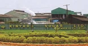 Tough Times: Tears As Kinyara Sugar Axes Thousands Of Workers In Massive Downsizing