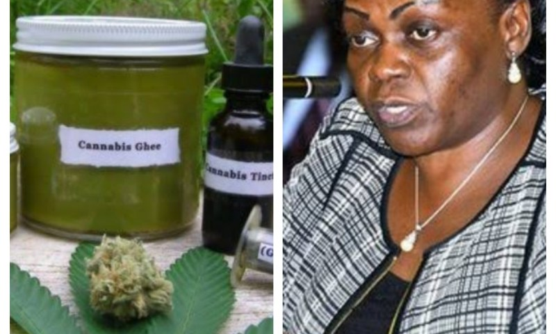 'Gov't To Legalise Marijuana Growing In Uganda'- Min. Opendi
