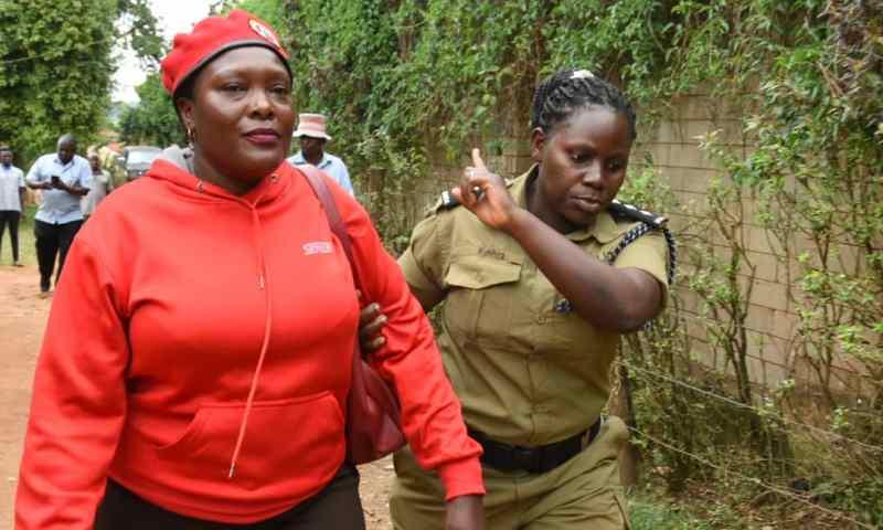 Police  Arrest Top People Power  Mobiliser