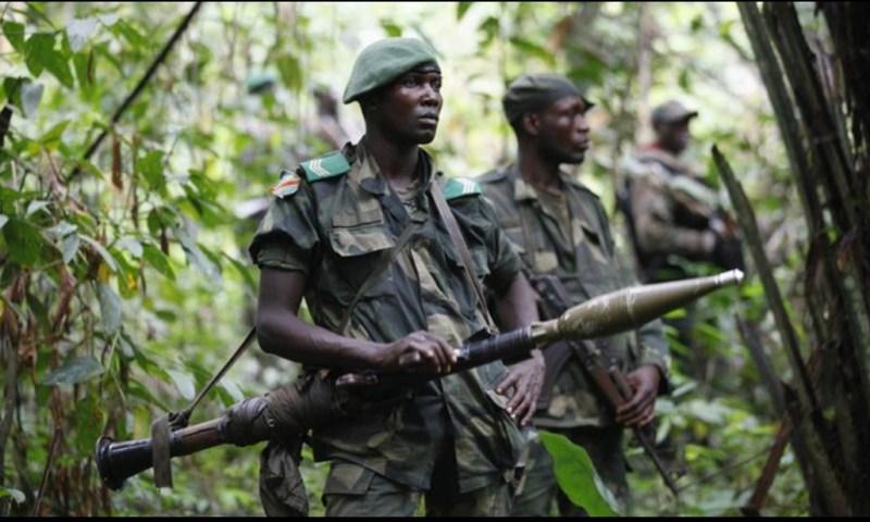 ADF Rebels Kill 30 Soldiers In Congo, Leave 70 Nursing Grave Injuries