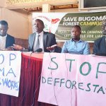 Grief: Conservationists Cry Foul As Court Dustbins Their Case, Okays Demolition Of Bugoma Forest