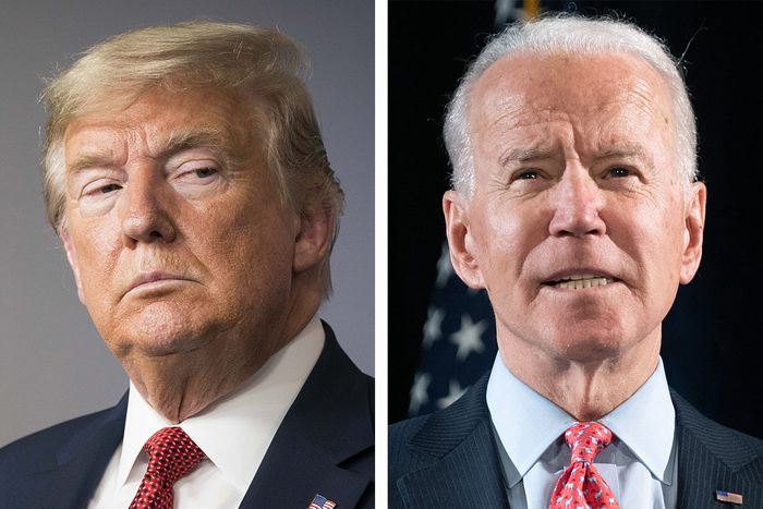 Breaking! President-Elect Biden Floors 'CRYING BABY' Donald Trump Again As Superior Court Flashes His Electoral Petition To Nearest Toilet