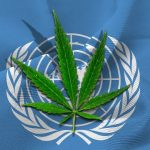 UN Okays Cannabis Growing After Removing It From Strictest Drug Category