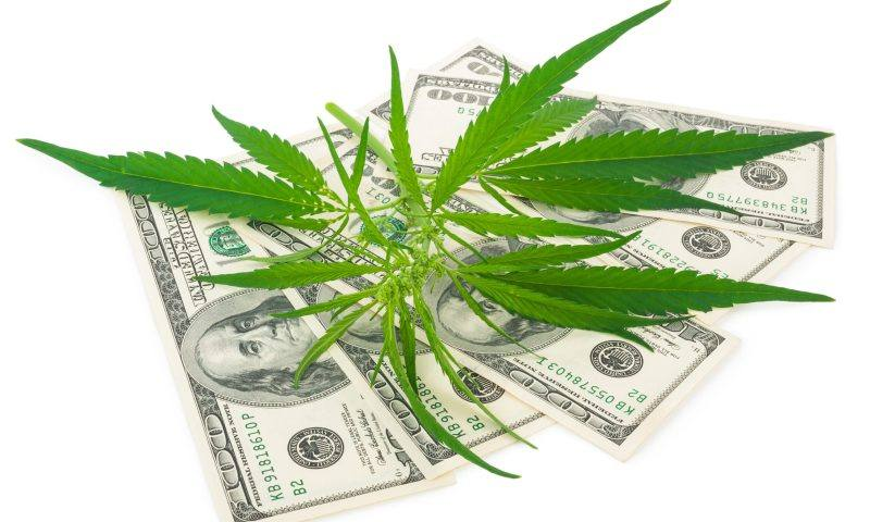 Full List: African Countries Happily Minting Trillions From Cannabis Exportation As Ugandans Cry For Its Urgent Legalization