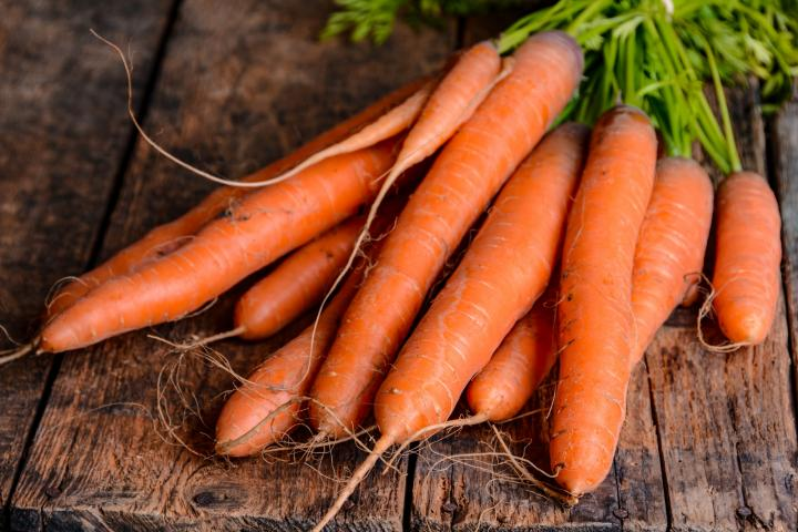 Farmer's Guide: How & When To Grow Carrots For A Fruitful Harvest