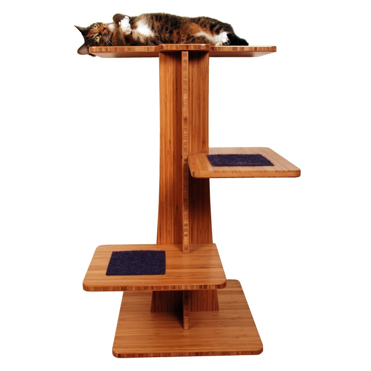 Cat on top of wooden modern cat tree