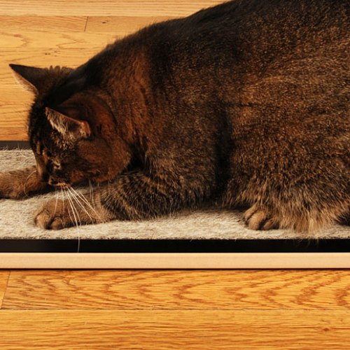 modern cat scratcher black