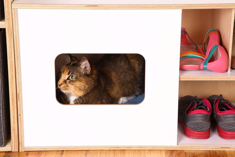 Mouse modern shoe bench with cat home ROOM COZY KITTY