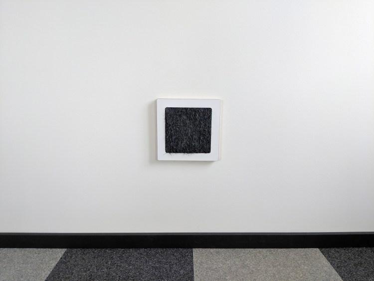 Modern wall cat scratcher in birch black cat front view