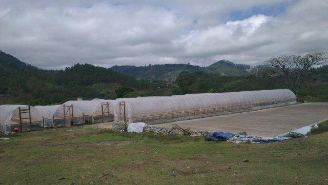 El Espino mill