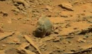 EVIDENCE: The 'skull' can be seen on footage released by NASA Mars video.