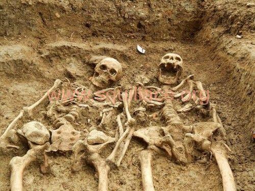 scheletri inglesi