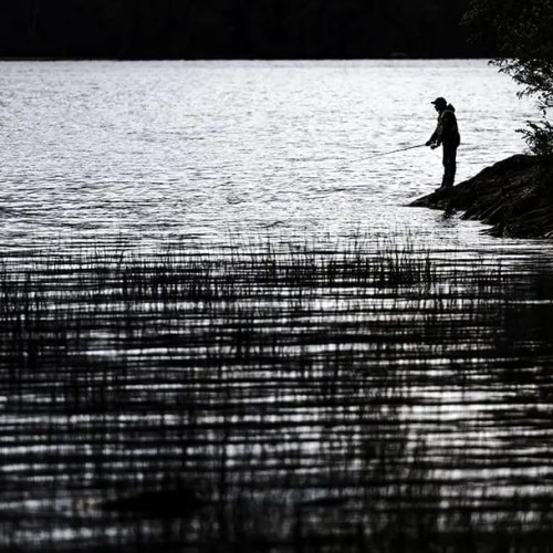 Fisherman by the lake