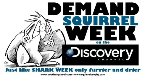 SQUIRREL WEEK ON DISCOVERY CHANNEL