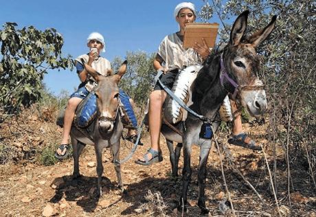 Izraelci izmislili magarce s pristupom na internet
