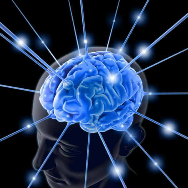 Ne biste vjerovali što vam može 'povećati' mozak