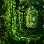 The Tunnel of Love u Ukrajina