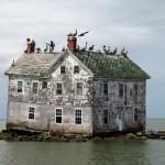 Holland Island u zaljevu Chesapeake