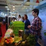 Gosti iz Niša na Znanstvenom pikniku detaljnije objašnjavaju fotosintezu/ Foto: Ivan Božić|srednja.hr