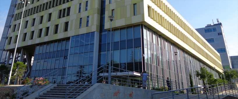 Sveučilištu u Rijeci studenti dali čvrstu četvorku: Najzadovoljniji profesorima, ali ne i količinom prakse