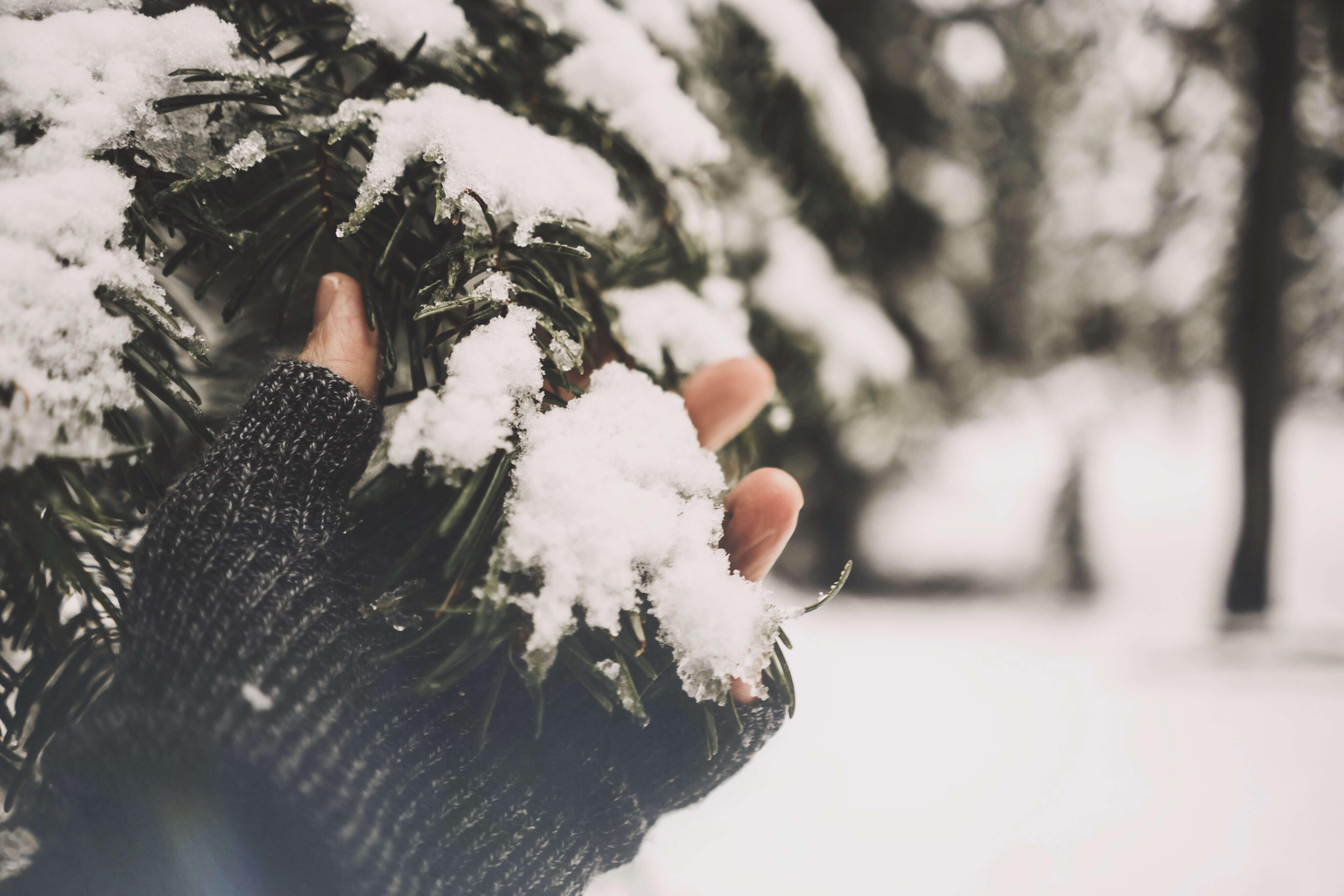 Prilagodba hladnoći: 25 načina na koje se promijenimo kada dođe zima