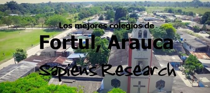 Los mejores colegios de Fortul, Arauca