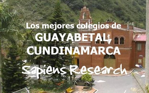 Los mejores colegios de Guayabetal, Cundinamarca