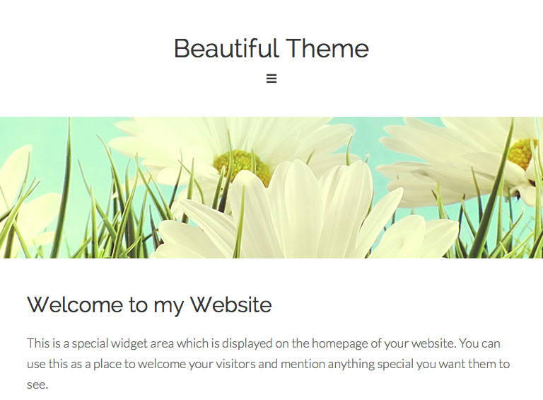Beautiful-Theme-Mobile-Responsive-HTML5