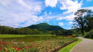 botanical gardens wet zone gardens sri lanka