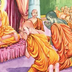 sri lanka poya nawam full moon poya buddha