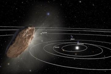 Oumuamua NASA ESA STScI
