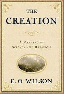 The Creation Wilson