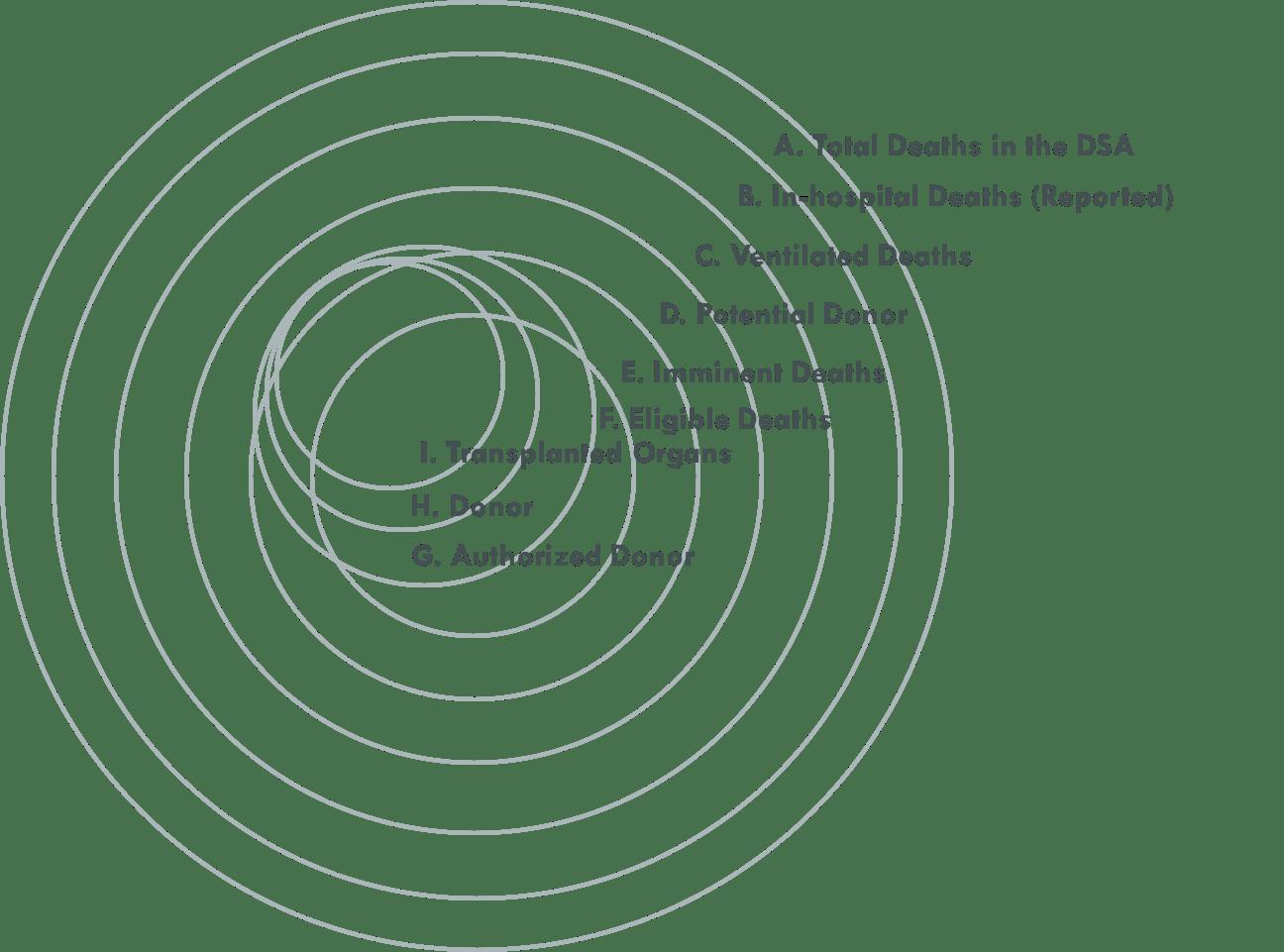 Guide To Key Opo Metrics