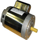 Leeson electric boat hoist motor catalog 6439191264 model C6K17NC19 2HP 1800RPM 56C frame
