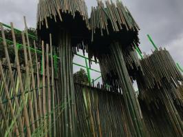 Rocinha 2020 – Alegorias na concentração. Foto: Vinicius Albudane/SRzd