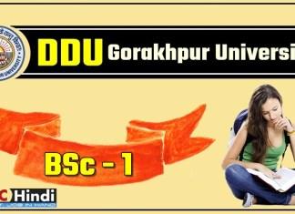 Gorakhpur-University-DDU-BSC-1-First-Year-Result-2018
