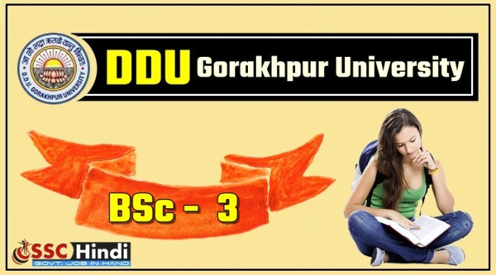 Gorakhpur-University-DDU-BSC-3-Third-Year-Result-2018