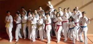 Taekwondo Kerpen beim SSK: Wir stellen uns vor