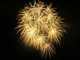 鹿島の花火2009(5) : 1024 * 768 pixels, 117KB