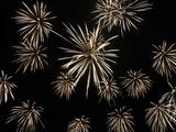 鹿島の花火2009(8) : 1024 * 768 pixels, 126KB