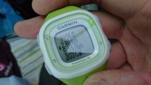 GPS腕時計を借りて測りました