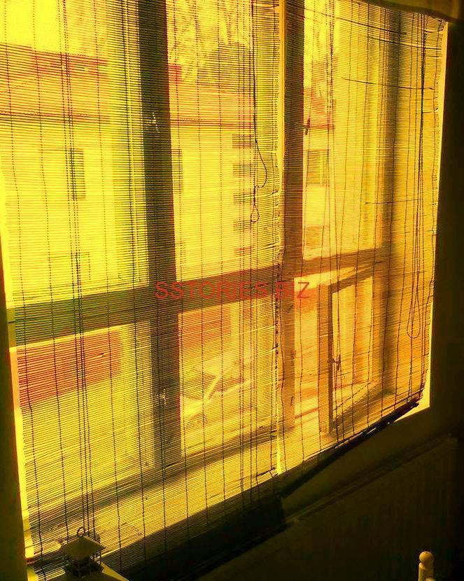 Един език - един прозорец